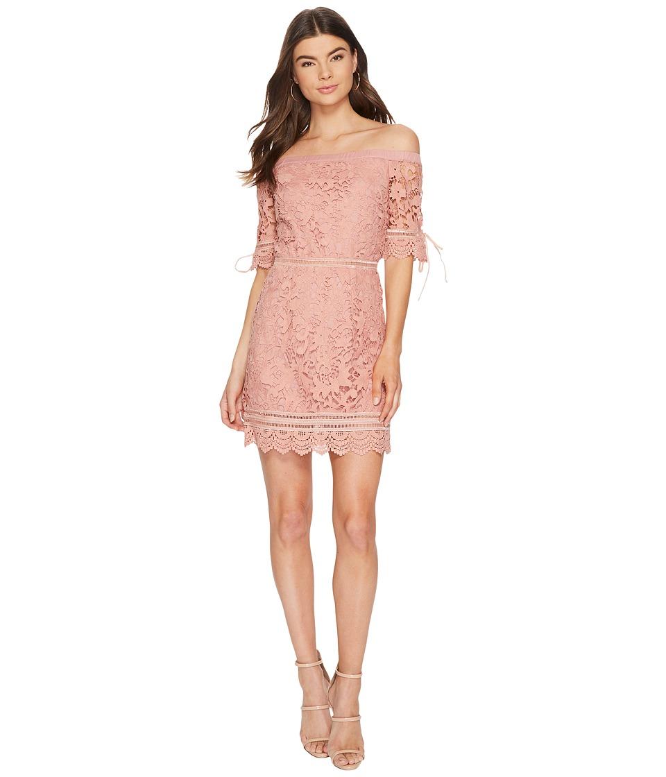J.O.A. Off the Shoulder Lace Trim Dress (Rose) Women