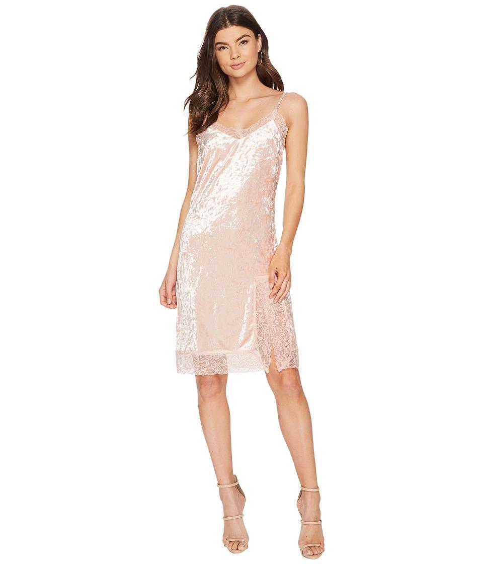 J.O.A. Lace Trim Velvet Slip Dress (Dusty Pink) Women