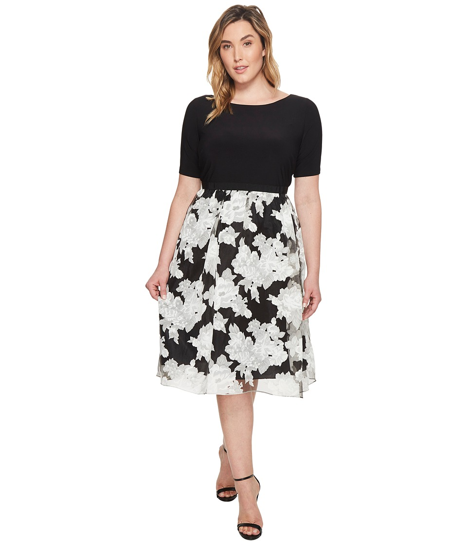 Adrianna Papell Plus Size Savannah Crinkled Organza Print Fit and Flare Dress (Black/Ivory) Women
