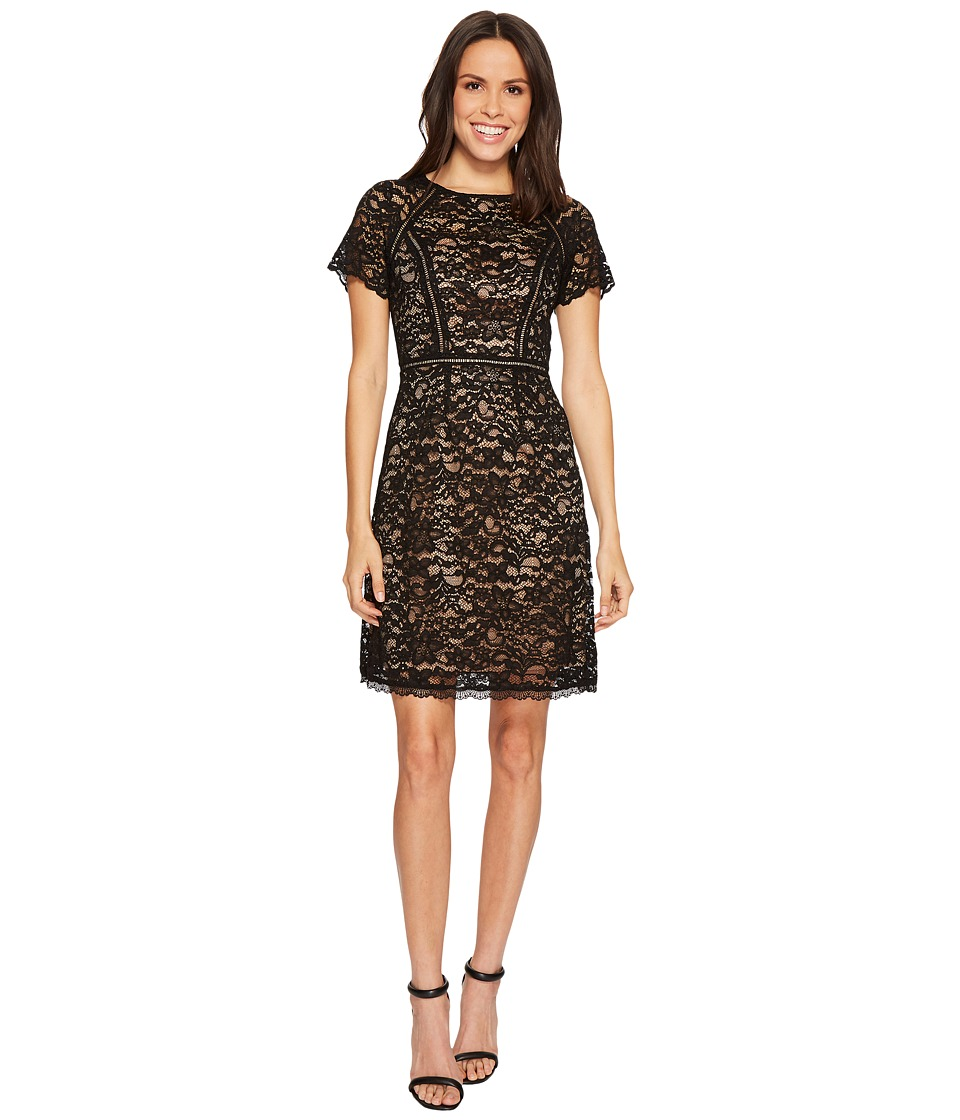 Adrianna Papell Aubrey Lace Short Sleeve Soft Fit and Flare Dress Spliced with Trim Inserts (Black/Nude) Women