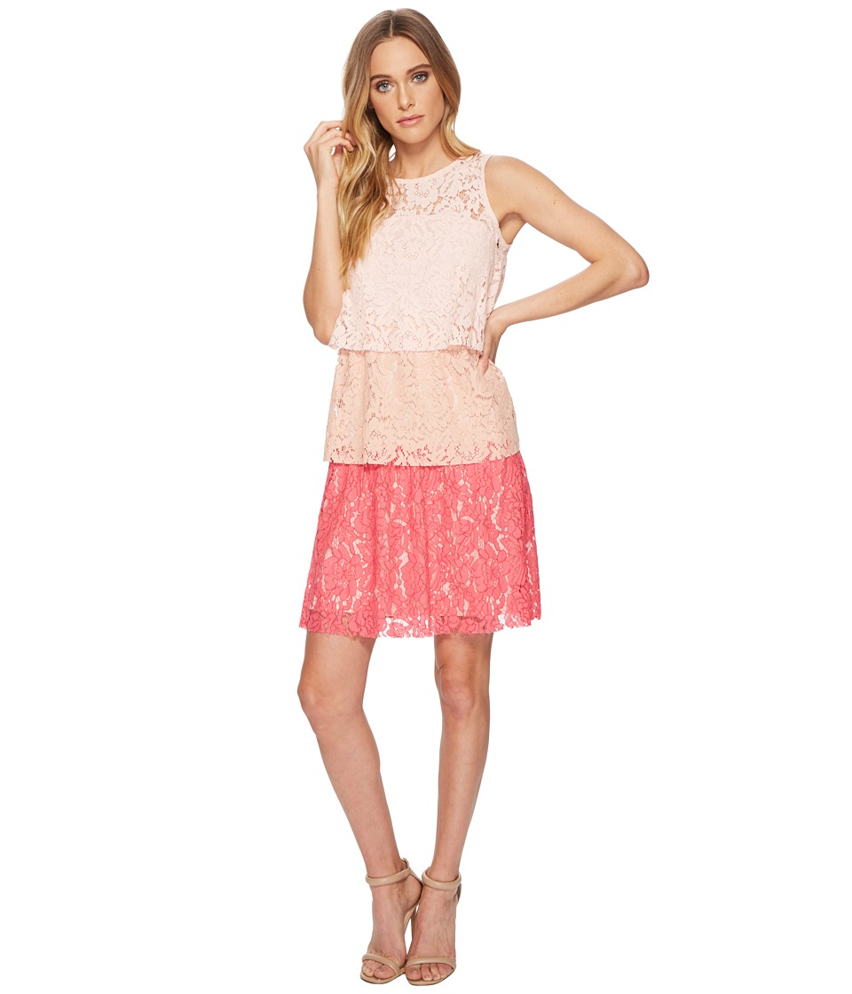 Taylor Tiered Lace Ombre Shift Dress (Blush Coral) Women