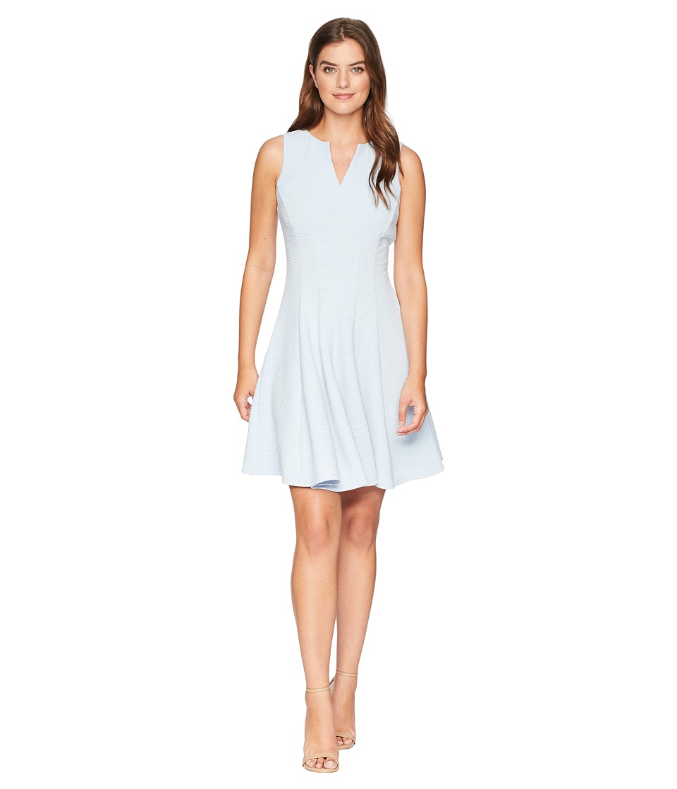 Taylor Solid Fit and Flare Dress (Blue) Women