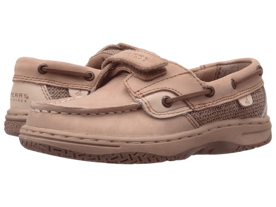 Sperry Kids - Bluefish Hook Loop (Toddler/Little Kid) (Linen/Oat) Boys Shoes